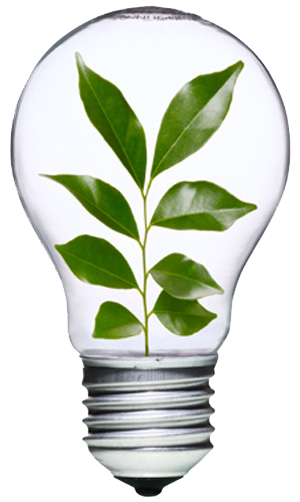 energy-efficient-bulb